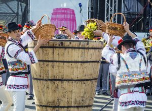 Festivalului Vinului Moldovei