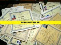 diplome false