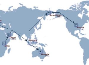 harta lumii-min